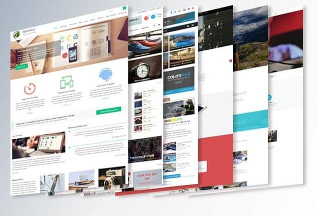 płatny szablon WordPress