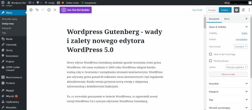 Wordpress Gutenberg, Gutenberg WordPress  – wady i zalety nowego edytora