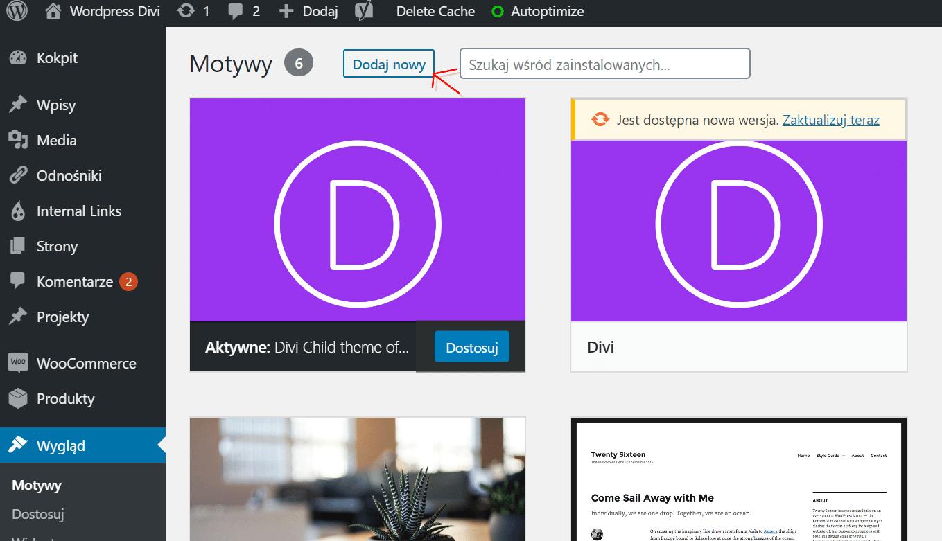 Jak zainstalować WordPress Divi