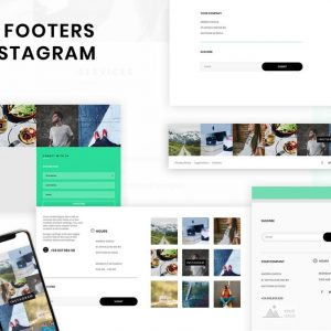 Instagram Wordpress Divi